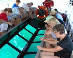 bali-glass-bottom-boat2
