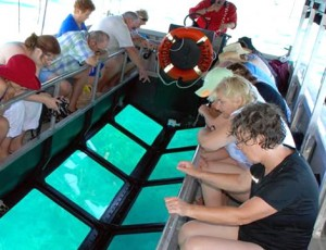 bali-glass-bottom-boat2