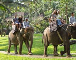 elephant_riding3