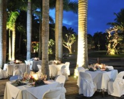 palm_grove_dining